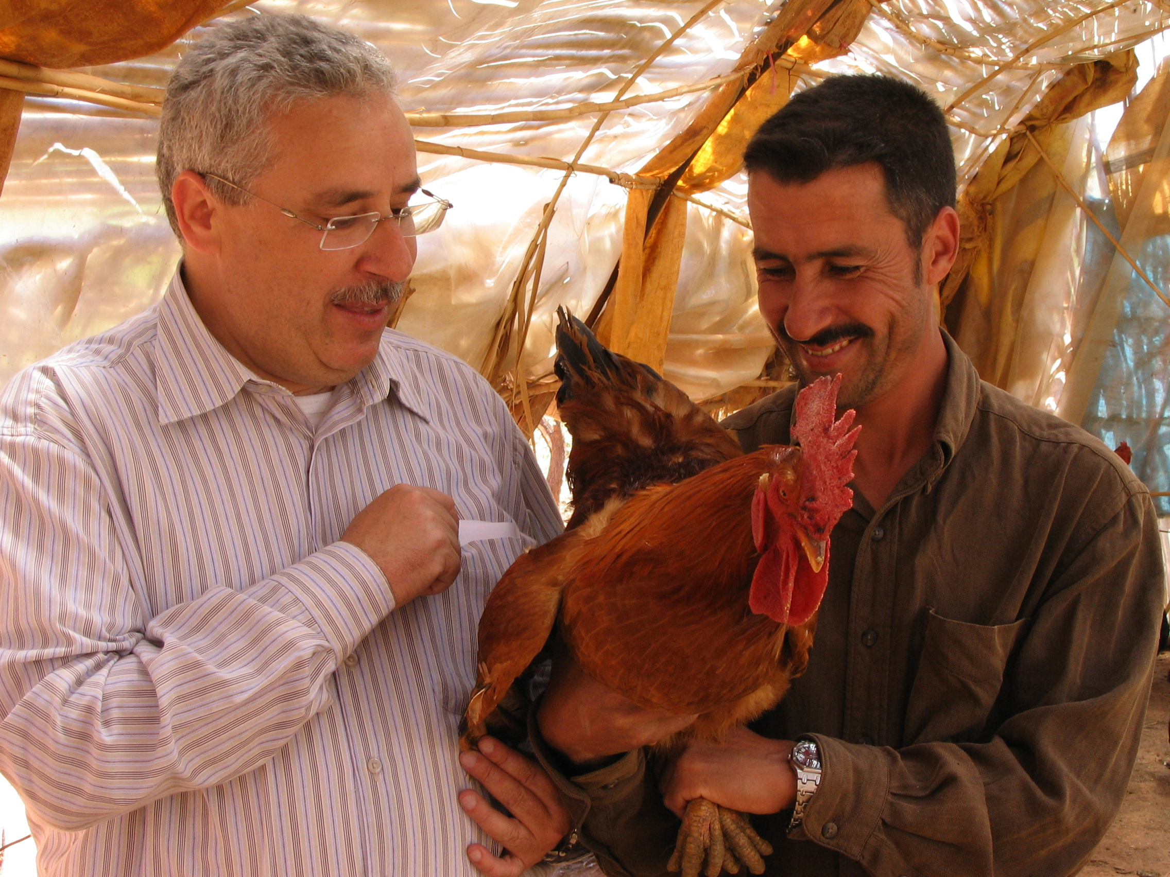 Two men holding a chicken